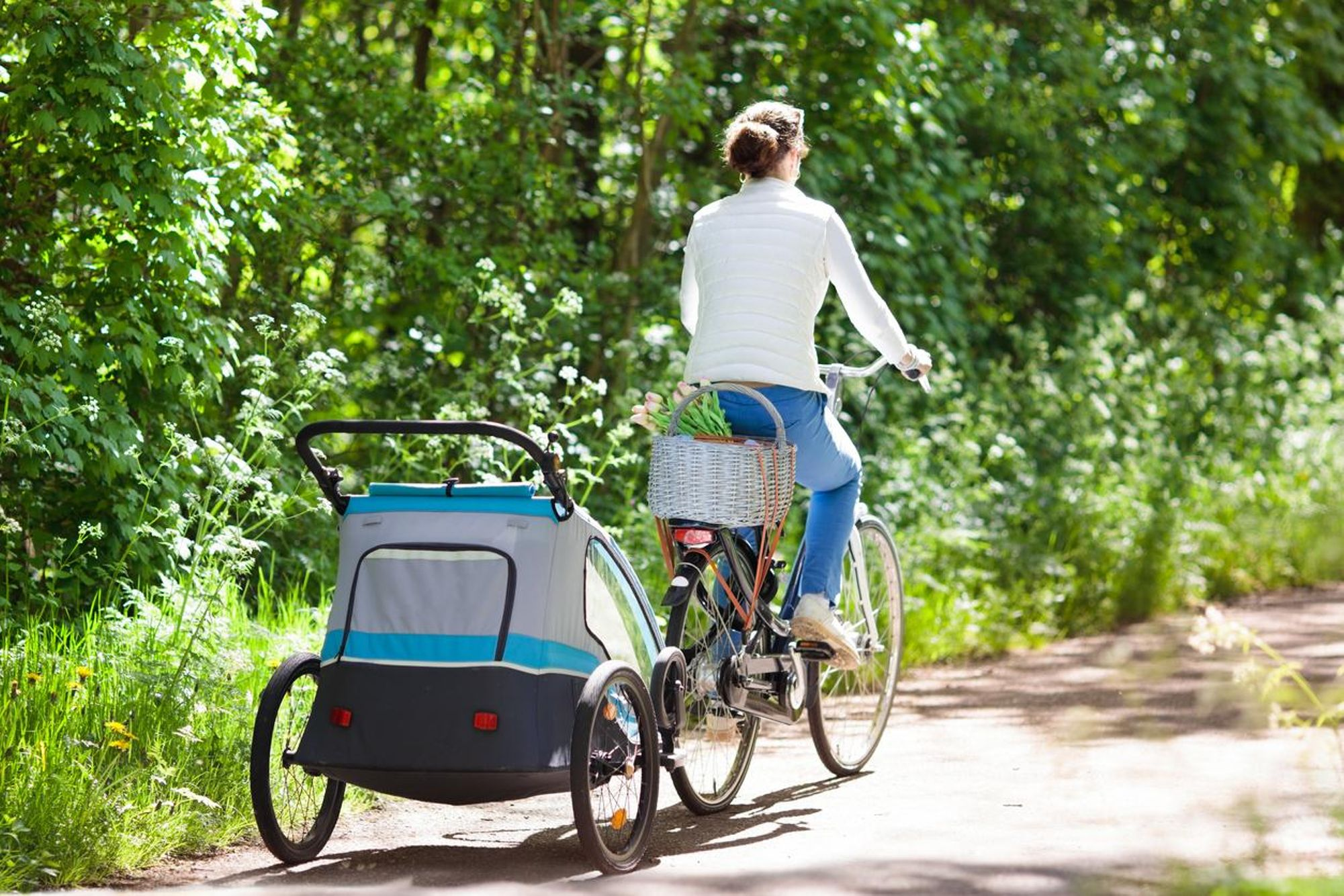 Meilleures remorques vélo bébé image